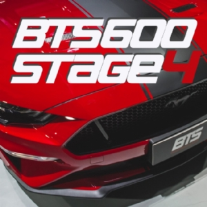 Pacote BTS 600 ( Stage4 ) para o Ford Mustang GT 5.0 2018 / 2019 / 2020